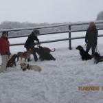 2015-02-01 - Spaziergang im Schnee (1)